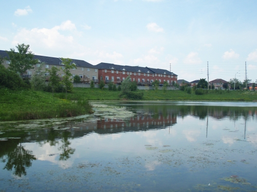 Stormwater management ponds are designed to collect and retain urban stormwater and release it slowly. Photo courtesy of LSRCA.