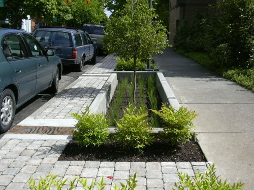 Landscaped spaces can transform street surfaces into living stormwater management facilities. Photo by Artful Rainwater Design.