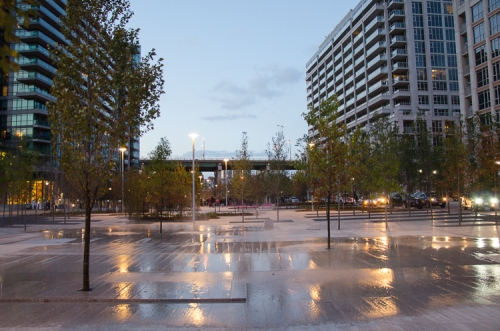 View northward through June Callwood Park. Ephemeral Pools at the forefront. Photo by Stephanie Calvet.